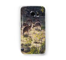 Kangaroos and Magpies - Canberra - Australia Samsung Galaxy Case/Skin