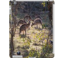 Kangaroos and Magpies - Canberra - Australia iPad Case/Skin