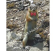 Chip the Chipmunk - That's Just Nuts Photographic Print