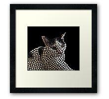 Kitty the Kat Framed Print