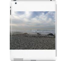 Del Coronado beach iPad Case/Skin