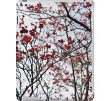 Sky Blossoms  iPad Case/Skin