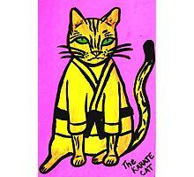 The Karate Cat Photographic Print