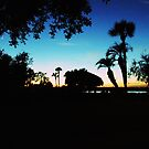 St. Simons Sunset by Julie's Camera Creations <><