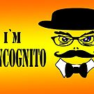 I`m Incognito by JohnDSmith