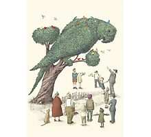The Night Gardener - The Parrot Tree Photographic Print