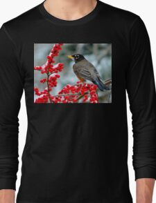 Robin Perched on Snowy Winterberry Long Sleeve T-Shirt