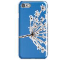 Frozen dried plant iPhone Case/Skin