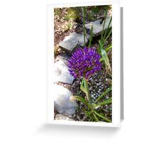 Purple Flower. Greeting Card