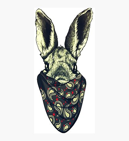 Bunny funny Photographic Print