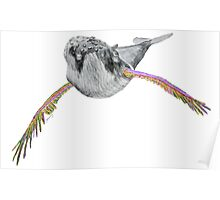 Humpback whale with wings (pink&light green) Poster