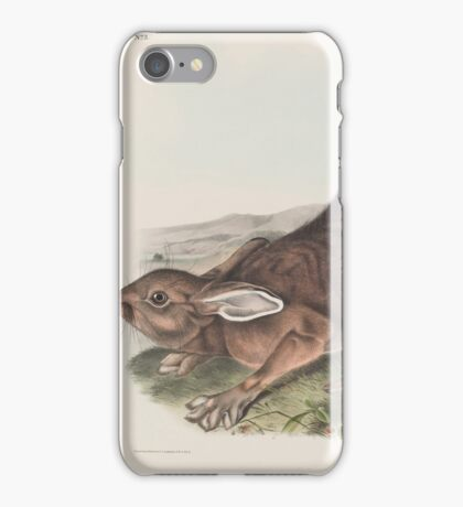 John James Audubon - Lepus americanus. Erxlebein. Northern Hare. Summer.   1, Male. 2, Female.1843 iPhone Case/Skin