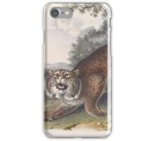 John James Audubon - Lynx rufus. Guldenstaed. Common American Wild Cat. 3-4   Male.1842 iPhone Case/Skin