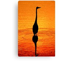 Fishing In The Early Light  Canvas Print