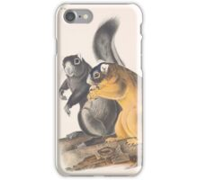 John James Audubon - Sciurus capistratus, Bos Fox Squirrel.1845 iPhone Case/Skin