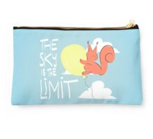 Flying Squirrel Studio Pouch