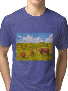 Highland Cattle Pasture Tri-blend T-Shirt