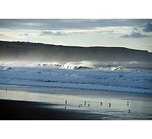 Seabirds on a Whitby Beach Photographic Print
