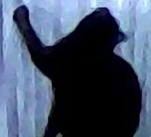 Cat Behind the Curtain Sticker