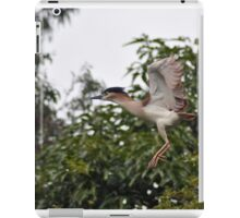 HERON iPad Case/Skin