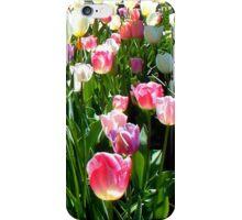 Tulips Glowing in the Sun iPhone Case/Skin