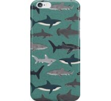 Sharks illustration art print ocean life sea life animal marine biologist kids boys gender neutral educational Andrea Lauren  iPhone Case/Skin