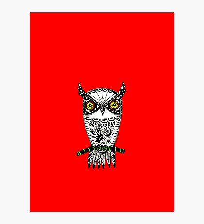 Red Graffiti Owl Photographic Print