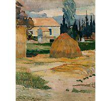Paul Gauguin - Landscape near Arles . Provence Photographic Print
