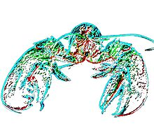 X-ray lobster PNG Photographic Print