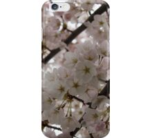 A Cloud of Cherry Blossoms iPhone Case/Skin