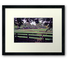 Equine Pasture Framed Print