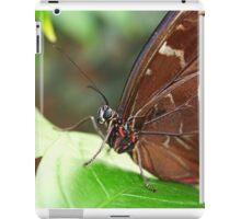 Morpho Up Close iPad Case/Skin