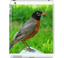Hello Mr. Robin!    ^ iPad Case/Skin