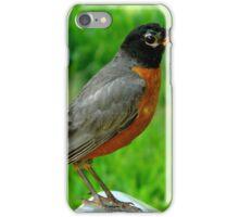 Hello Mr. Robin!    ^ iPhone Case/Skin