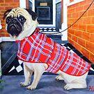Sad Pug Waiting for Walkies by Hannah Dosanjh