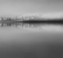Foggy morning on Lake Sammamish by LauraZim
