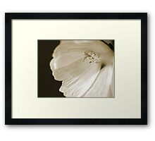 """Camera Shy"" - Rectangle Macro Sepia Image of a Hollyhock flower Framed Print"
