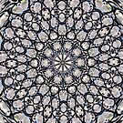 Crystal Vortex by Scott Mitchell