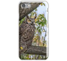 Owl on the Lookout iPhone Case/Skin