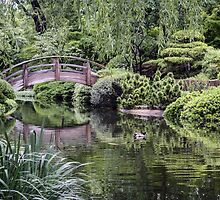 Japanese Garden by becky-lou