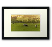 Country Gold Framed Print
