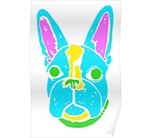 Neon Boston Terrier Poster