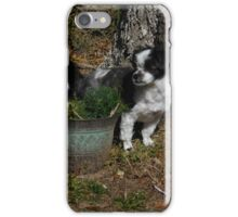 Juliet iPhone Case/Skin