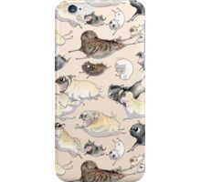 Pugs on the Run! iPhone Case/Skin