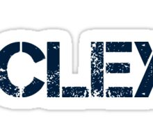 #CLEXA (Navy Text) Sticker