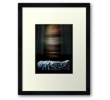 Memoir: Life goes by and then you're dead. Framed Print