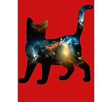 CELESTIAL CAT 3 Photographic Print