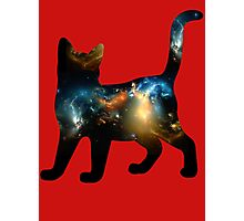 CELESTIAL CAT 3 Photographic Print