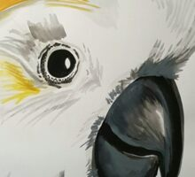 Cocky! sulphur crested cockatoo watercolour Sticker