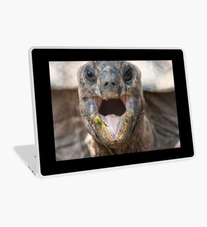 turtle eating Laptop Skin